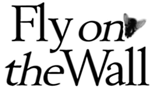 fly on the wall title